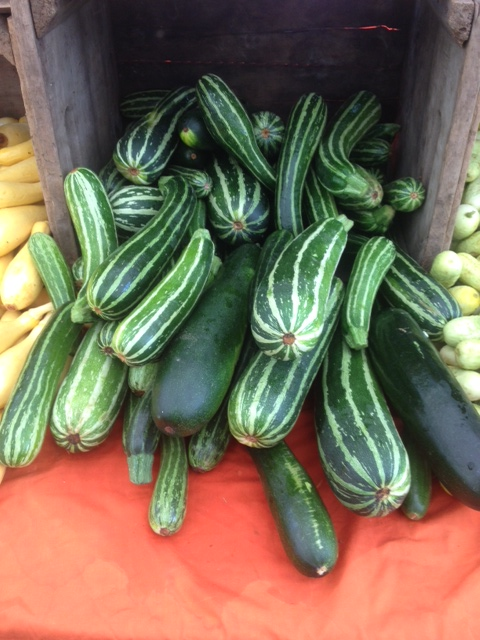 Fresh striped and green zucchinis