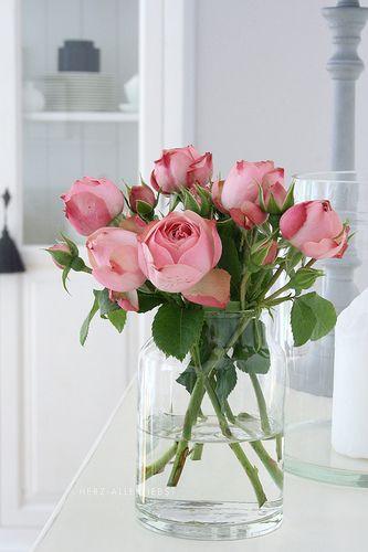 rose buds in vase