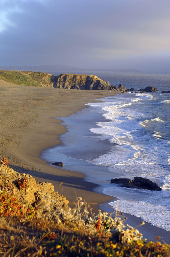 Bodega Bay Coast By Michael Flick